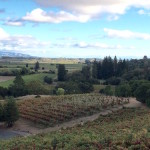 wineries3